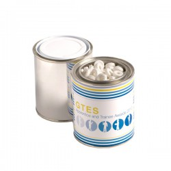 Paint Tin Filled with Mints 250G